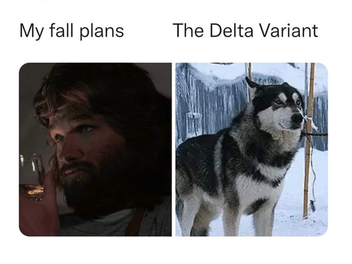 12 fall plans delta variant