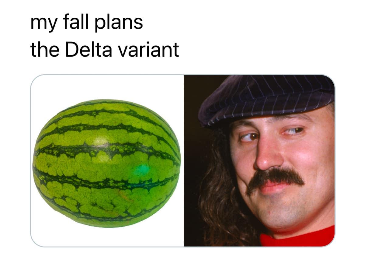 4 fall plans delta variant