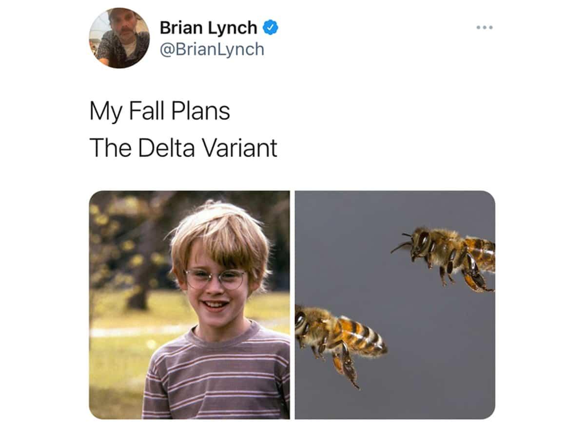 Fall plans delta variant