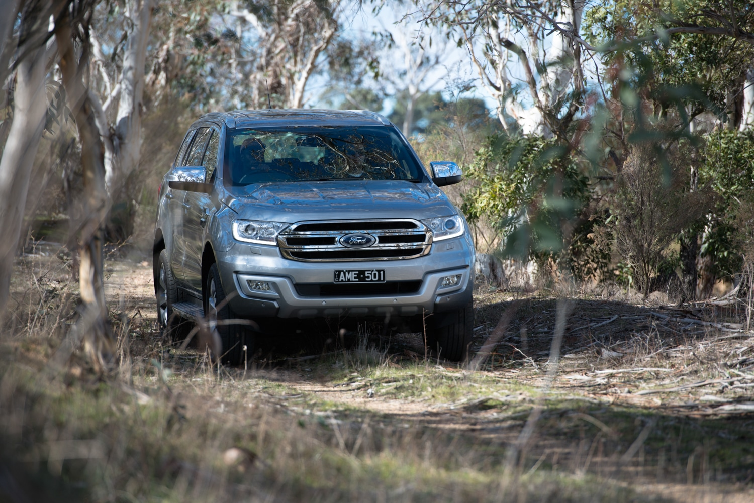 ford everest car in the jungle