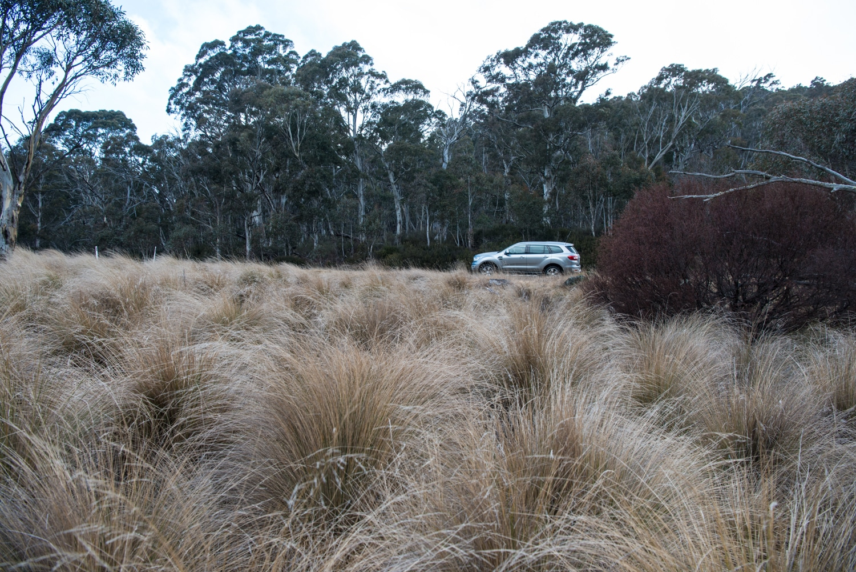 ford everest car standing far away