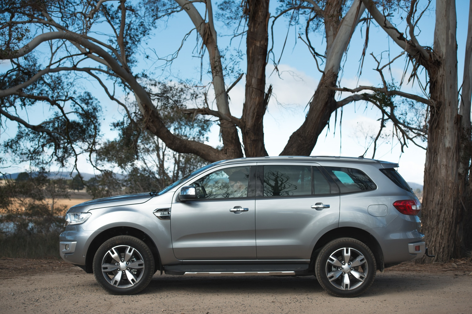 ford everest car under the tree
