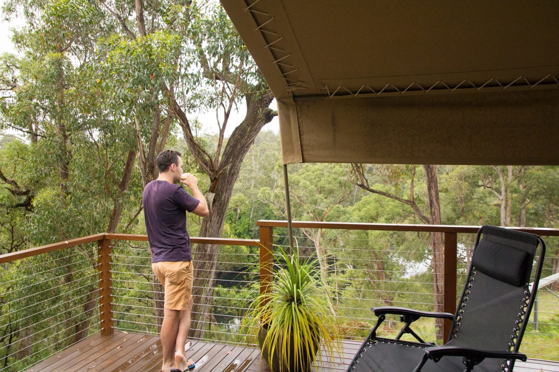 Man looking out at view of trees from a balcony