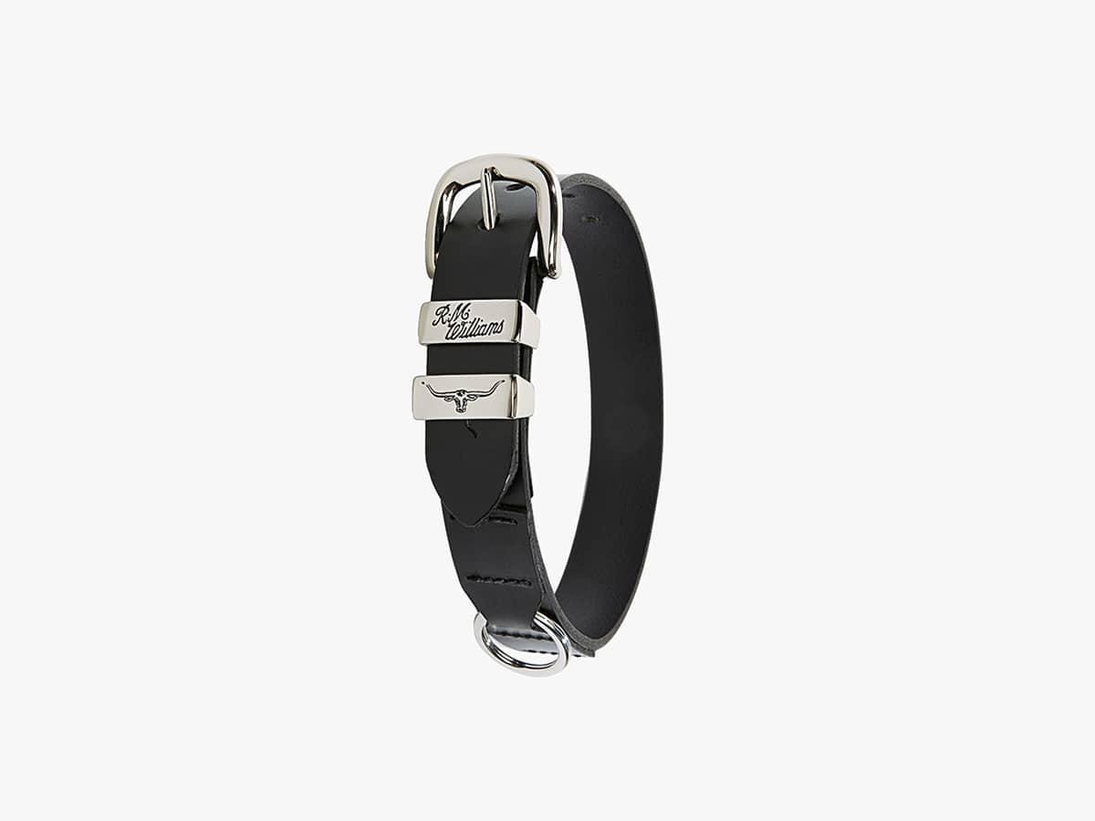 R m williams dog collar 1