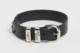 Rm williams dog collar