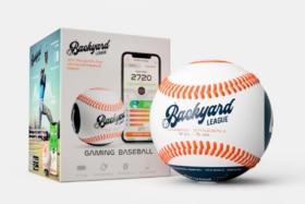 Backyard league gaming baseball